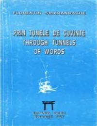 Through Tunnels of Words by Florentin Smarandache