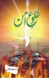 Tuloo e amn : Urdu novel by Amin, Hafiz Shahid, Dr.