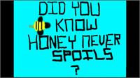 Bees : Honey that is Sold Never Spoils by Kini-Lopes, Kamaha'o