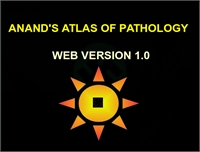 Anand's Atlas of Pathology by Andappan, Anand, Dr.