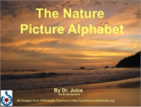 The Nature Picture Alphabet by Juice, Dr.