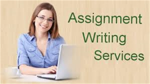 assignment writing service : Volume 1 by patel, jessica, Ms.