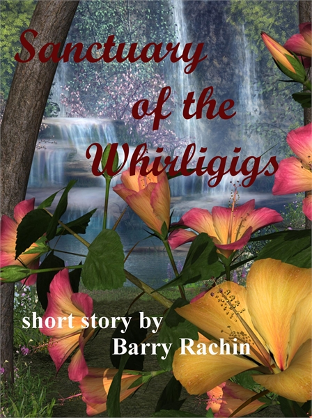 Sanctuary of the Whirligigs by Rachin, Barry