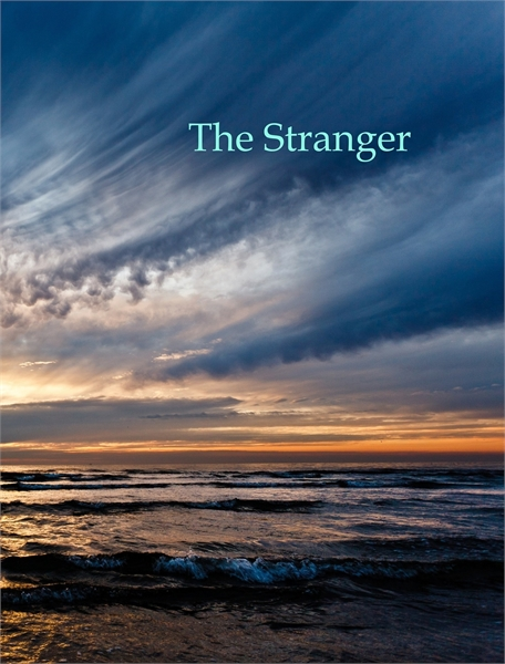 The Stranger by Earnshaw, Felicity