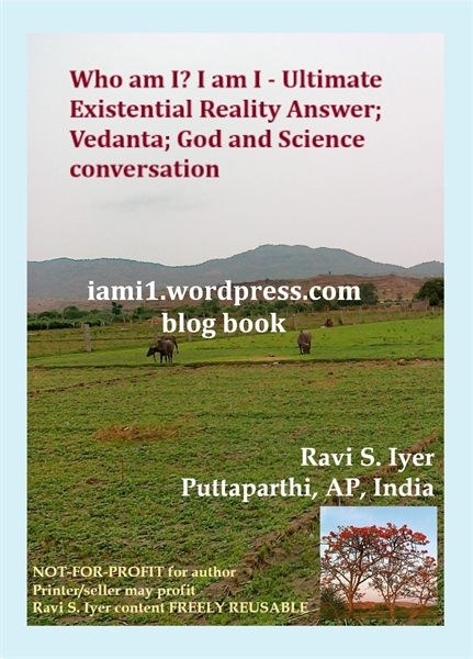 Who am I? I am I - Ultimate Existential ... by Iyer, Ravi, S.