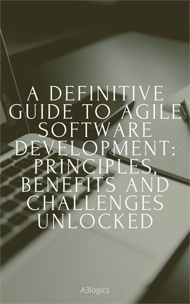A DEFINITIVE GUIDE TO AGILE SOFTWARE DEV... by Brown, Scarlett, Ms.