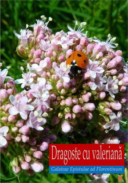 Dragoste cu valeriană. Galateae Epistula... by Smarandache, Florentin