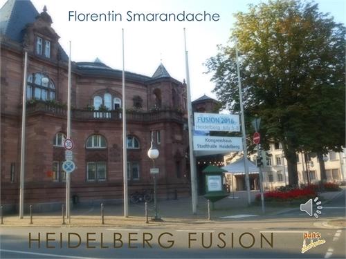 Heidelberg Fusion by Smarandache, Florentin