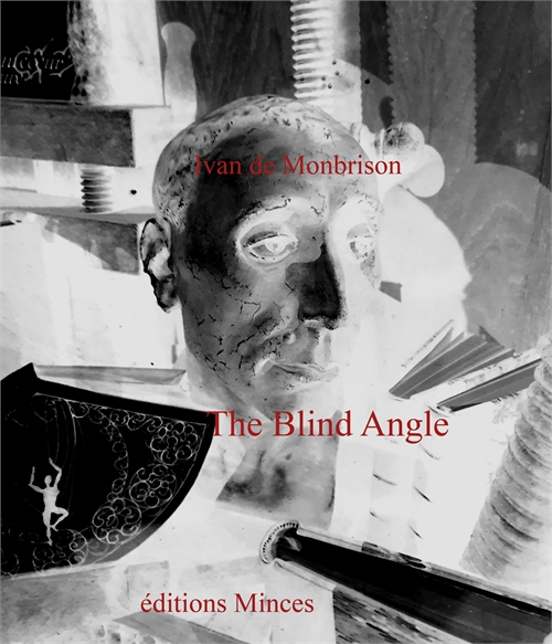 The Blind Angle by de Monbrison, Ivan