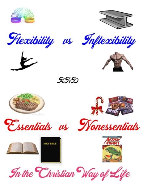 Essentials vs Non-Essentials in the Chri... by Ferraro, Frank, P, Dr.